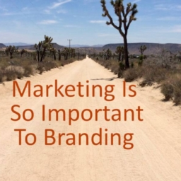 Why Marketing Is So Important to Branding